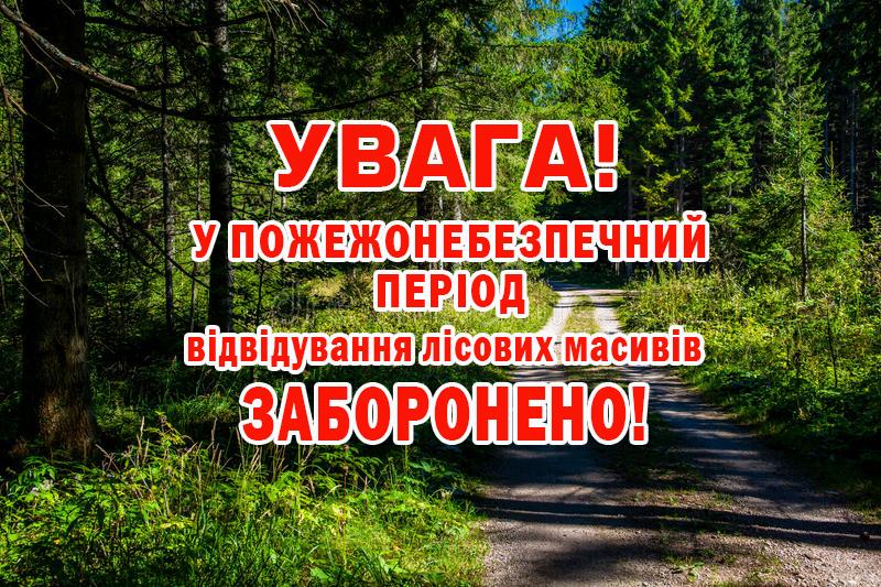 Наша Рокитнівщина — На Рівненщині заборонили відвідувати ліси